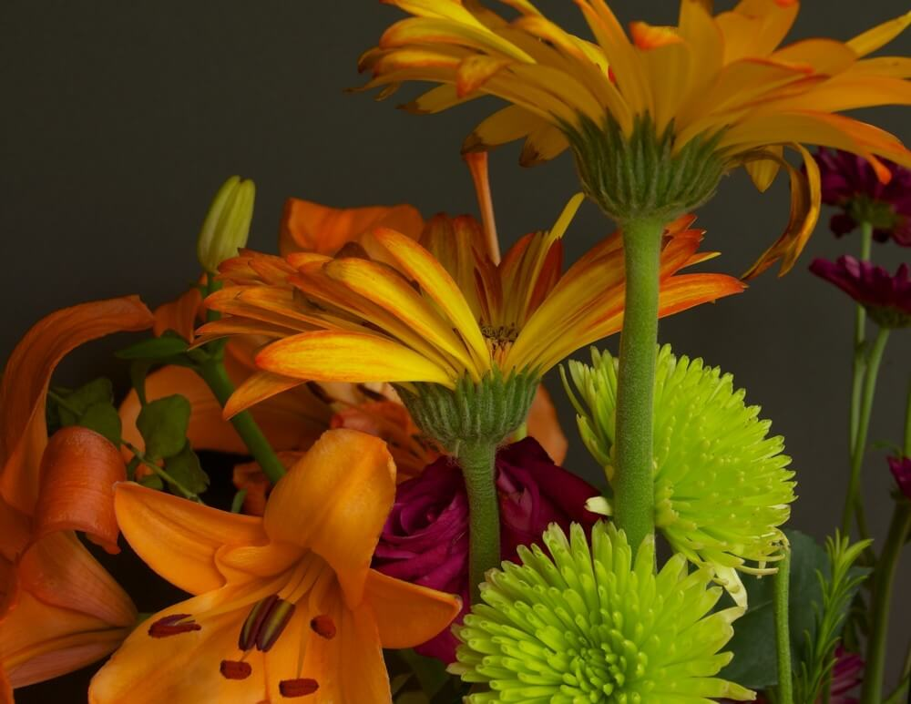 Assorted Flower Still Life by Brian Kabat