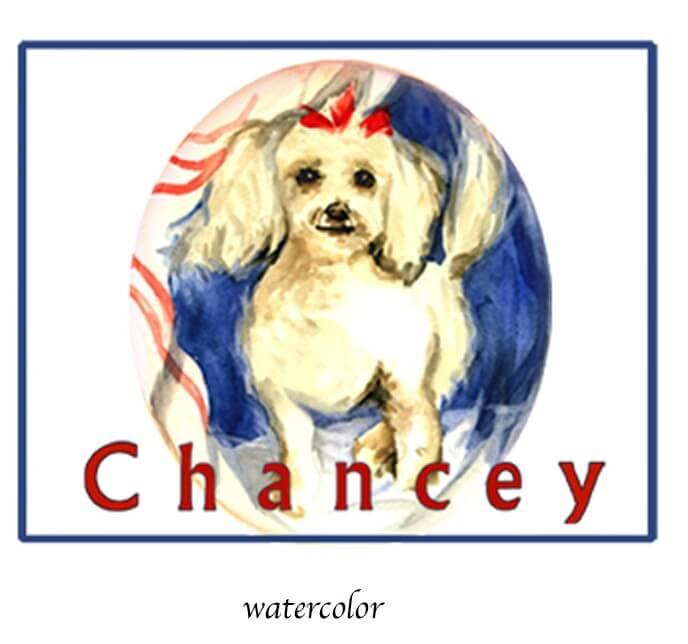 Chancey by Iris Jutovsky