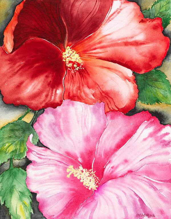 Hibiscus by Lori Indovina-Valus